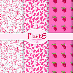 005 set plants
