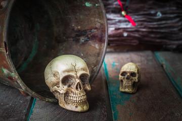 Skull in a bucket of old
