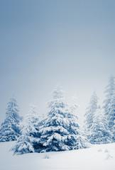 Wall Mural - Amazing winter landscape
