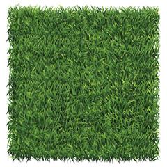 Square of dark green grass. A lawn dark green background vector.