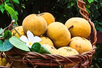 Fototapete - Santol fruit in a basket