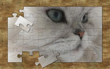 unfinished puzzle