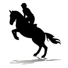 horse rider, vector illustration
