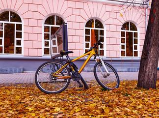Bike Fall City
