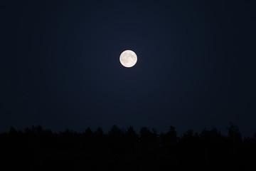 Supermoon over forest on dark night sky