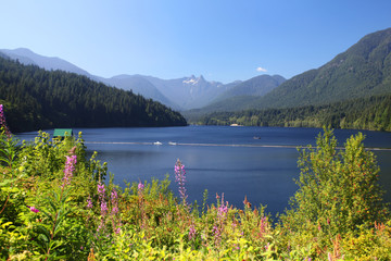 Wall Mural - Capilano Lake in British Columbia, Canada