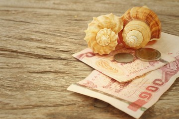 Conch with money of Thai Bath on background of wooden.