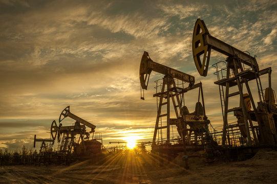 Oil pumps.