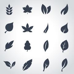 Vector black leaf icon set