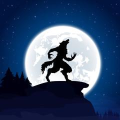 Werewolf on Moon background
