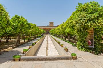 Shiraz Citadel garden
