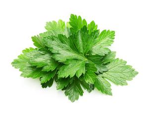 Fototapeta Parsley herb isolated obraz