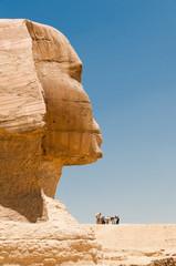 Sfinge di profilo, Giza, Egitto