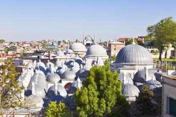 View Suleymaniye mosque in Istanbul, Turkey