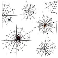 Spinnen und Netze
