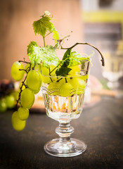 wine glass with a bright grapes on a branch and leaves on a dark wooden background close up