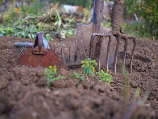 used gardening tools, shallow depth of field
