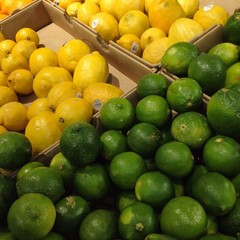 Lemons and limes citrus fruit in a grocery store supermarket fresh produce section.