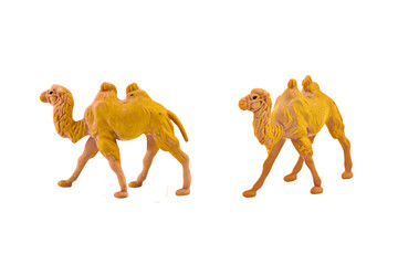 Isolated camel toy. Isolated camel toy side and angle view.
