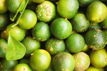 Calamondin or lemonsito citrus background image