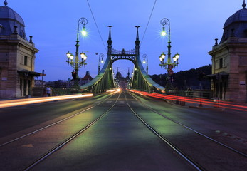 The Liberty Bridge (Green) in Budapest at the night, Hungary