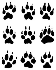 Black print of wolf's paw, vector