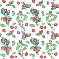 Seamless pattern with cranberry. Drawing with colored pencils.