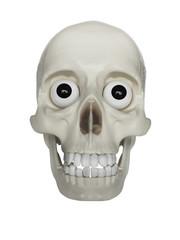 Crânio com vista frontal com olhos