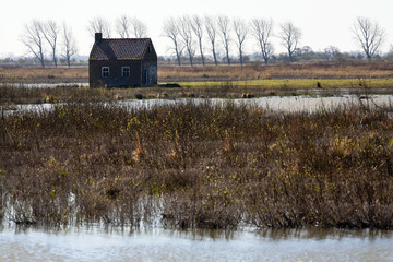 Most of the farms and houses in Tiengemeten, a freshwater tidal area in the Haringvliet estuary in the Netherlands, are abandoned and given back to nature