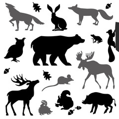 Animals living in european forest.