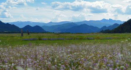 National park Uch-Enmek, Altai, Siberia, Russia