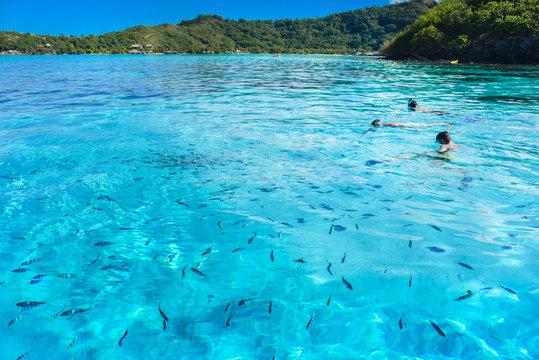 Snorkling a Bora Bora