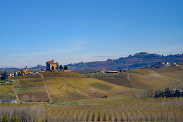 Fotomurales - Grinzane Cavour Castle in the Langhe hills in autumn