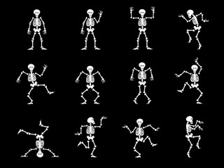 Set design elements: funny skeletons - dancing and yoga