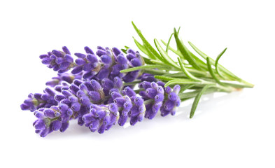 Photo sur Toile Condiment Lavender flowers