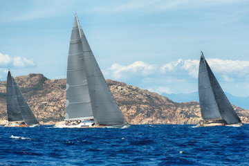 group yacht sailing in regatta