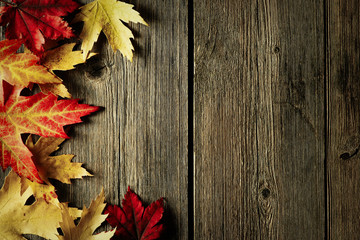 Autumn maple leaves over wooden background
