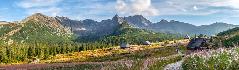 Fototapeta Hala Gasienicowa in Tatra Mountains - panorama