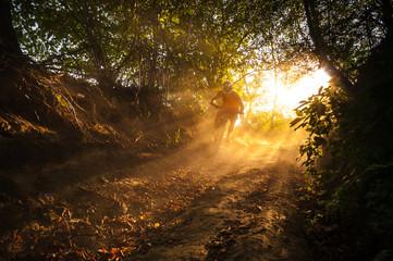 Downhill mountain biker at sunset