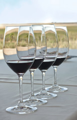 Wine tasting: a row of glasses with red wine with a vineyard in the background