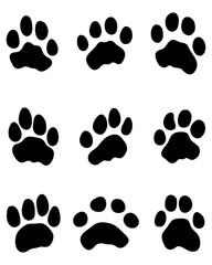 Black print of tiger paw, vector
