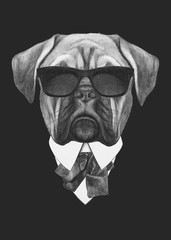Portrait of French Bulldog in suit. Hand drawn illustration.