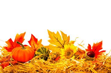 Herbstdeko Ranke Freisteller Rahmen