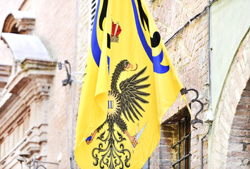 The Noble Contrada of the Eagle flag