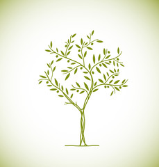 Olive tree icon. Vector element