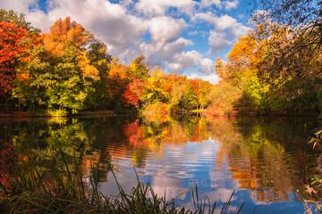 Fototapeta Jesienne kolory drzew odbite w lustrze wody obraz