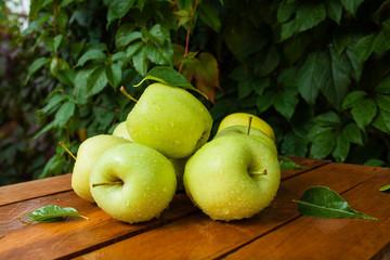 зеленые яблоки в деревне на фоне зелени
