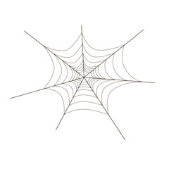 Spider web on white background, vector illustration with spider web, black and white illustration