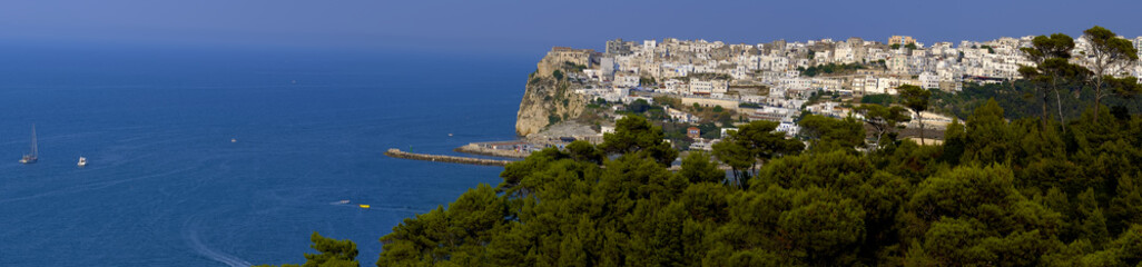 Beautiful landscape of Peschici in Apulia Gargano - Italy