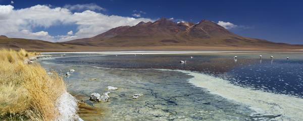 Desert lake Laguna Cañapa, Altiplano, Bolivia on a sunny day